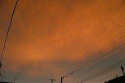 日曜日の夕焼け雲_c0087349_5204054.jpg