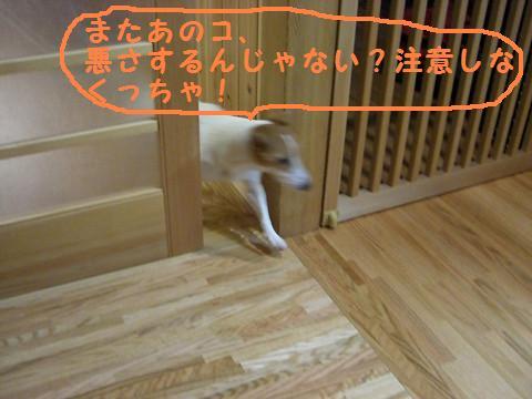 f0108553_14563236.jpg