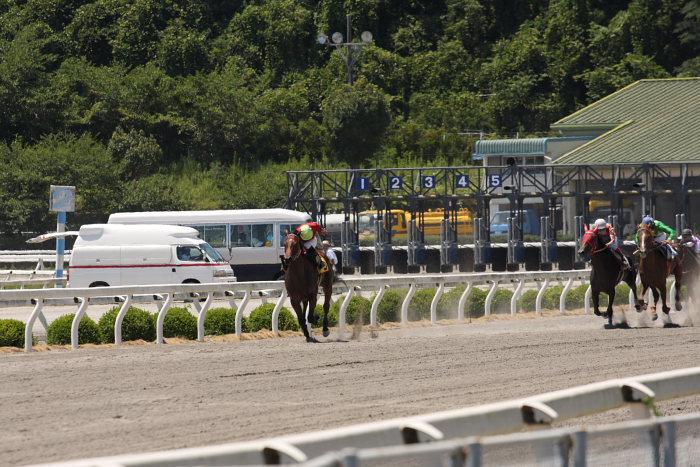 2008年7月27日(日) 高知競馬 1R_a0077663_18101199.jpg