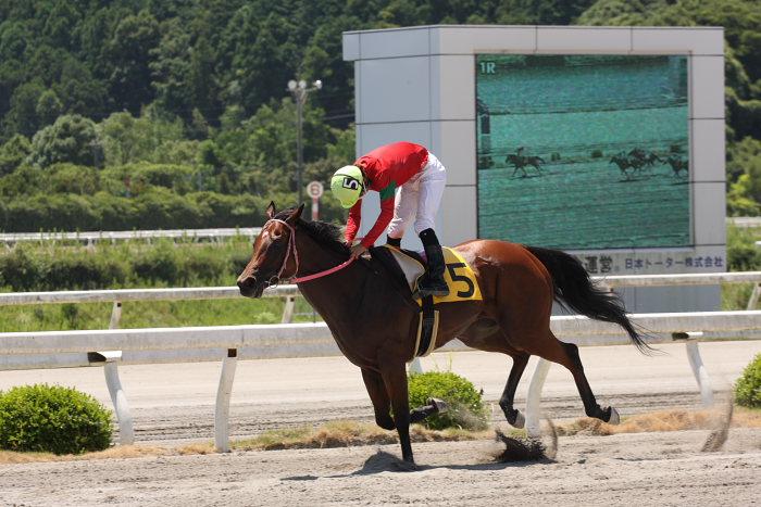 2008年7月27日(日) 高知競馬 1R_a0077663_18101856.jpg