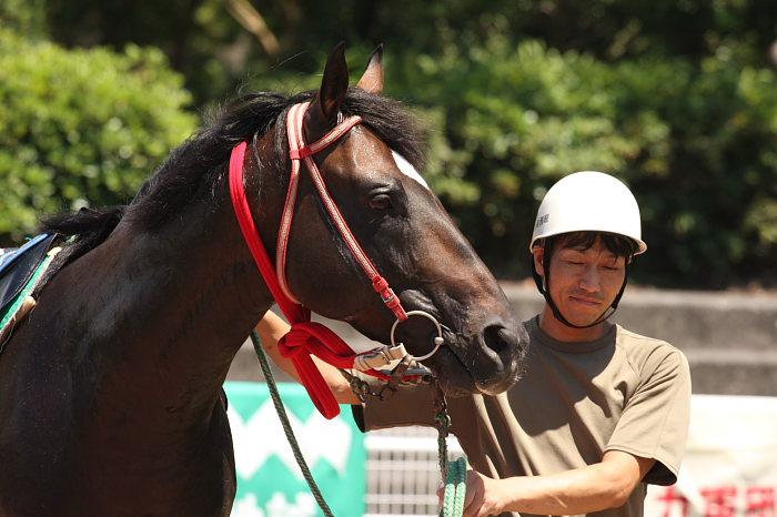 2008年7月27日(日) 高知競馬 1R_a0077663_1893455.jpg
