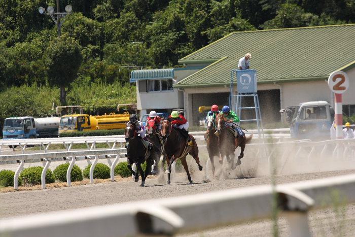 2008年7月27日(日) 高知競馬 1R_a0077663_1895751.jpg