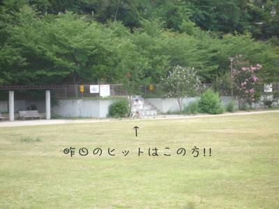 f0154163_1303480.jpg
