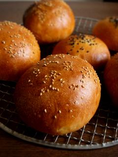 ハンバーガーバンズと、その生地でミニ食パン_c0110869_21104128.jpg