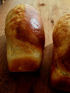 ハンバーガーバンズと、その生地でミニ食パン_c0110869_2111652.jpg