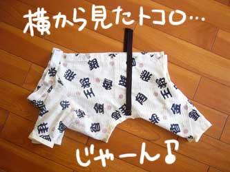 平蔵的パジャマの作り方_b0057675_11575979.jpg