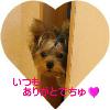 f0018384_1642686.jpg