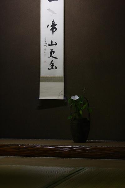 高桐院から_e0051888_11254774.jpg