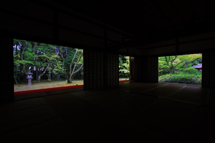 高桐院から_e0051888_11262784.jpg
