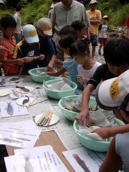 芦生自然学校 魚編 その2 食う_c0057390_23152477.jpg