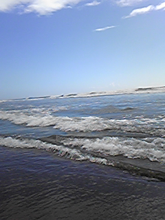 海行きてぇ~_e0002794_21284581.jpg