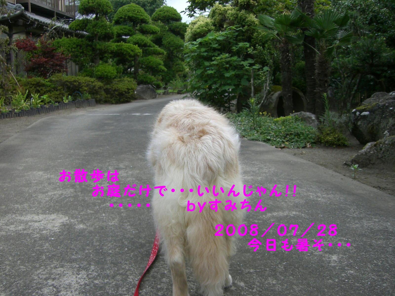 e0059197_10411289.jpg