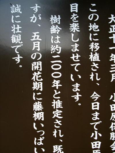 c0011204_230531.jpg