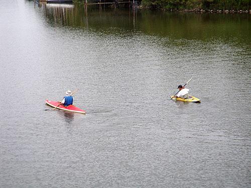 ついに利根川へ! (花見川カヌー探検 その3)_c0137404_106426.jpg