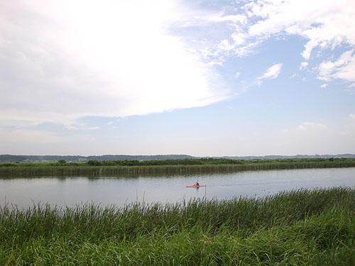 ついに利根川へ! (花見川カヌー探検 その3)_c0137404_9314292.jpg