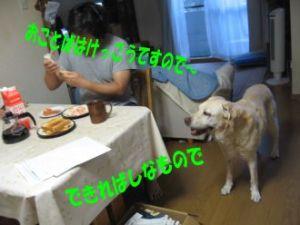 b0008217_12195127.jpg