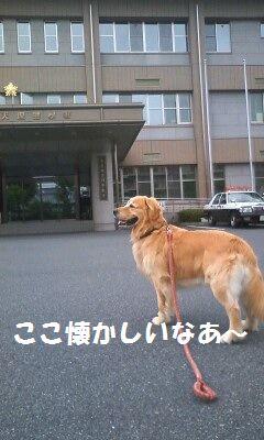 b0127531_2050251.jpg