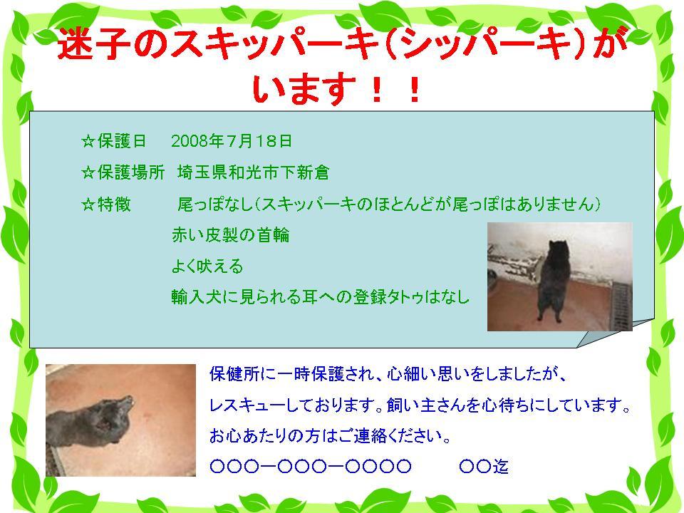 d0049135_12501732.jpg