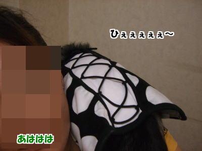 d0020869_1337674.jpg