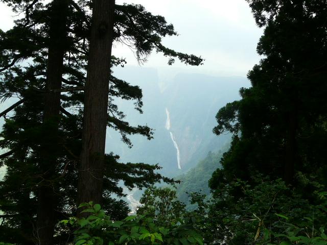 7月26日 立山自然観察第1日・その1_e0145782_1635460.jpg