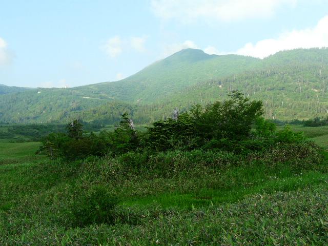7月26日 立山自然観察第1日・その1_e0145782_1694154.jpg