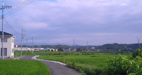 朝の散歩_d0000995_2322039.jpg