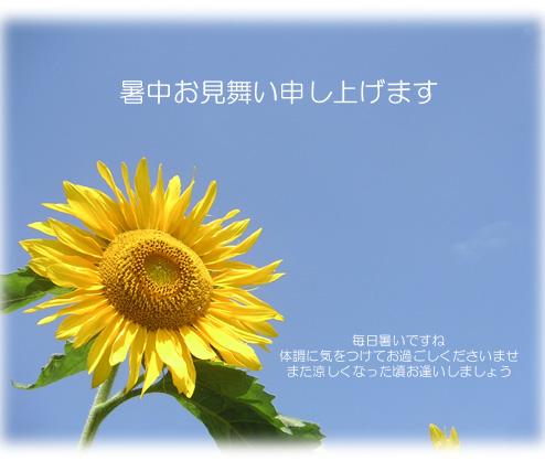 f0173302_1147161.jpg