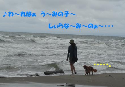 追記~ われは海の子 白波の_f0170713_1235344.jpg