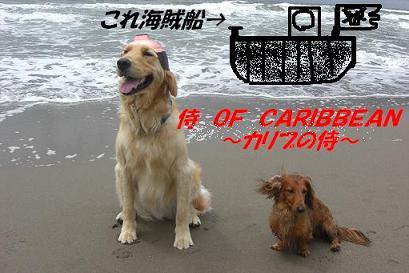 追記~ われは海の子 白波の_f0170713_138135.jpg