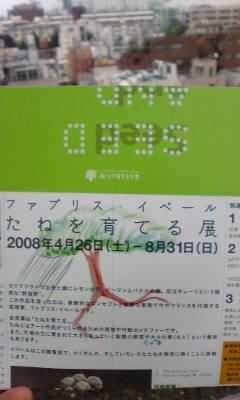 b0140831_13554486.jpg