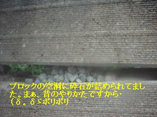 f0031037_21373360.jpg