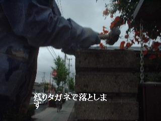 f0031037_21414985.jpg