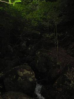 f0169059_1530448.jpg
