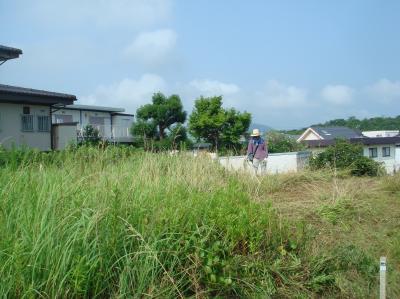 みさき公園団地の草刈り_c0108460_14161512.jpg