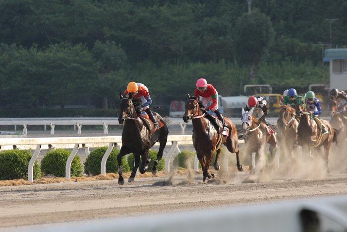 濱田達也騎手、4勝目~_a0077663_209078.jpg
