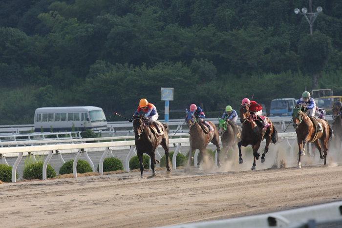 濱田達也騎手、4勝目~_a0077663_2091219.jpg