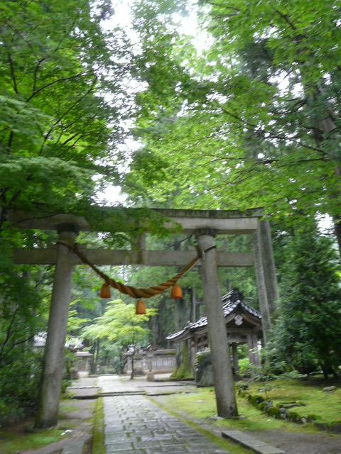 7月28日 立山自然観察第3日(最終日)_e0145782_17245687.jpg
