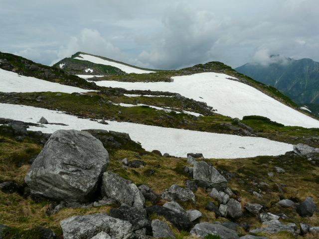 7月27日 立山自然観察第2日・その1_e0145782_63289.jpg