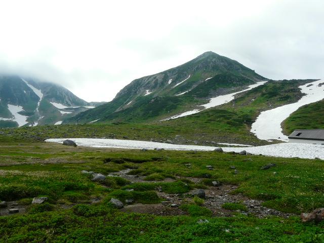 7月27日 立山自然観察第2日・その1_e0145782_63291.jpg
