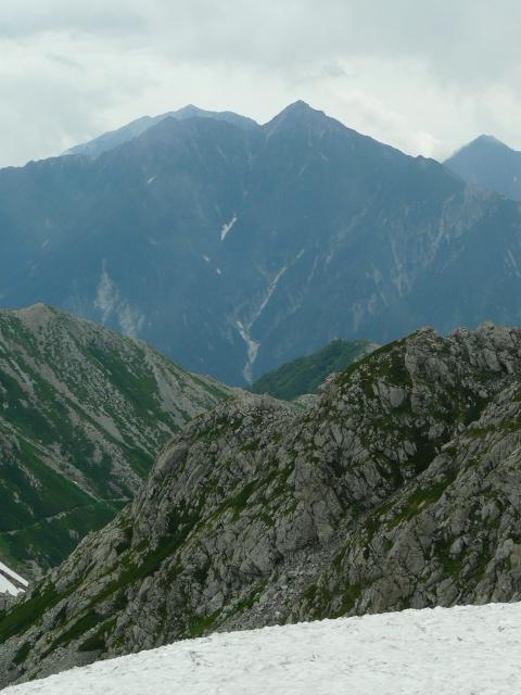7月27日 立山自然観察第2日・その1_e0145782_64381.jpg