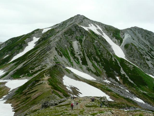 7月27日 立山自然観察第2日・その1_e0145782_652769.jpg
