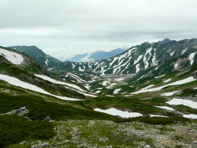 7月27日 立山自然観察第2日・その1_e0145782_662536.jpg
