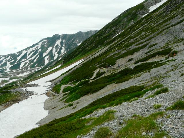 7月27日 立山自然観察第2日・その1_e0145782_671129.jpg