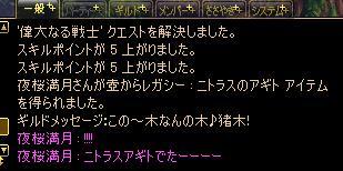d0145586_2034356.jpg