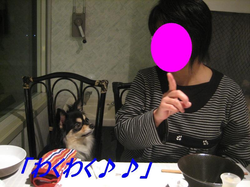 b0150088_17344472.jpg