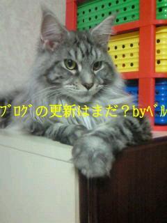 b0110692_19363818.jpg