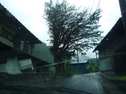 丹波山村で突然の豪雨 : つなぐNPOまちミューブログ