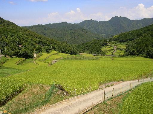 熊本訪問2_a0018497_2241462.jpg