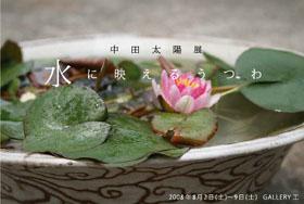 次の展覧会は、「水に映える器」中田太陽展_a0089420_11372664.jpg