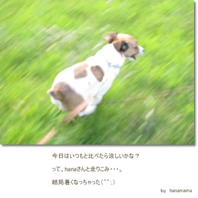 f0134756_21345411.jpg
